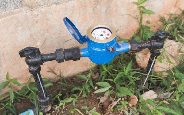 Podlicznik wody ogrodowej: jak taniej podlewać rośliny w ogrodzie